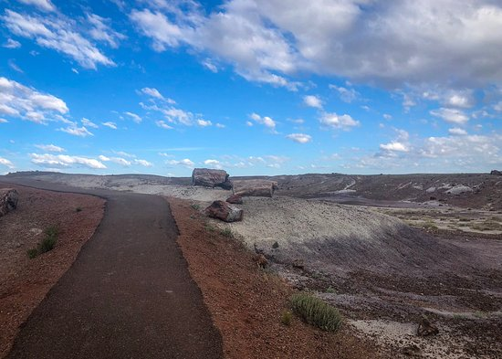 Petrified Forest National Park, Arizona: Crystal Forest Loop