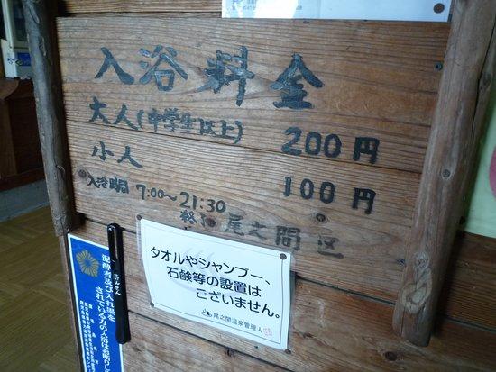 onoaida onsen hot spring03