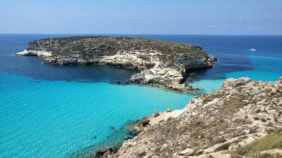 Cartina Delle Spiagge Di Lampedusa.Il Fenomeno Della Spiaggia Dei Conigli A Lampedusa Recensioni Su Spiaggia Dei Conigli Lampedusa Tripadvisor