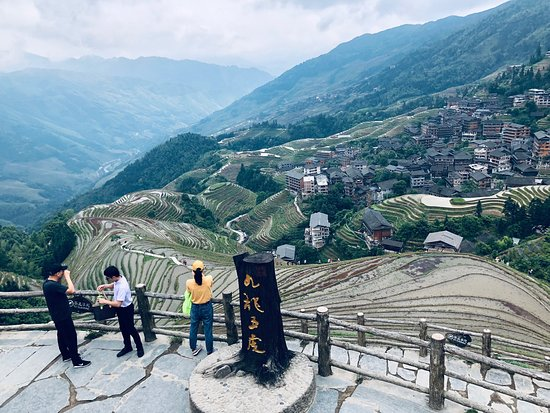 Guilin Private Tours by Sunflower Tours is Excellent! Yangshuo  Private Tours by Sunflower Tours. Dragon's Backbone Rice Terraces ,Longji mountain & Ping'an Village