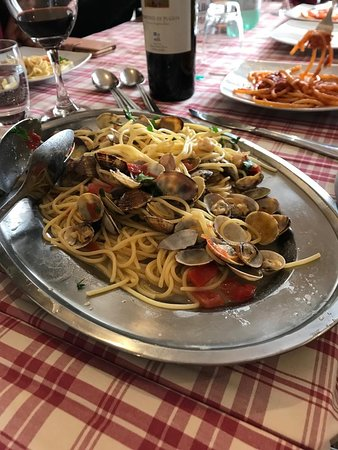 Sperlonga di spaghetti mussels, clamd ,parsley and fresh cutted tomatoes
