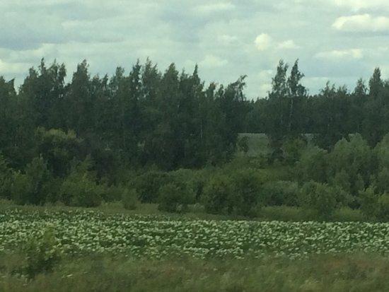 Tula Oblast, Rússia: Тульская область