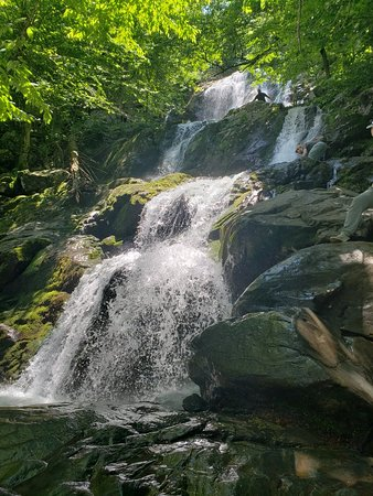Beautiful cascade falls with a back door to Dark Hollow falls