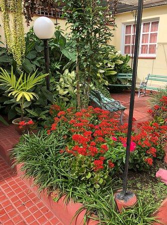Una de las varias zonas de descanso en medio del jardín tropical.