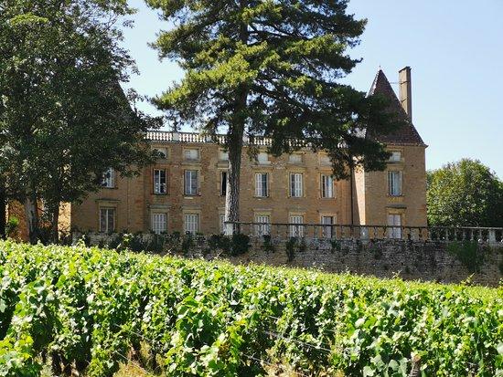 Chateau de Vinzelles
