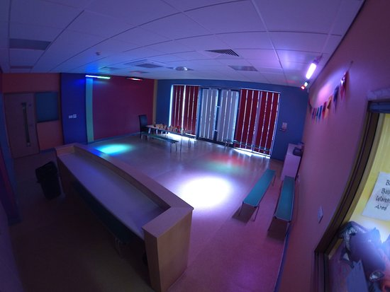 Fizzy Lizard: Our air conditioned party room
