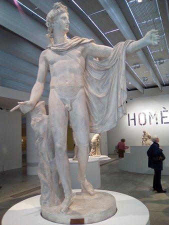 Exposition Homère