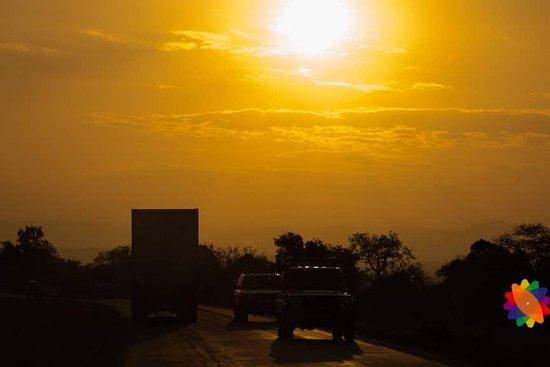 Kelvin Safaris
