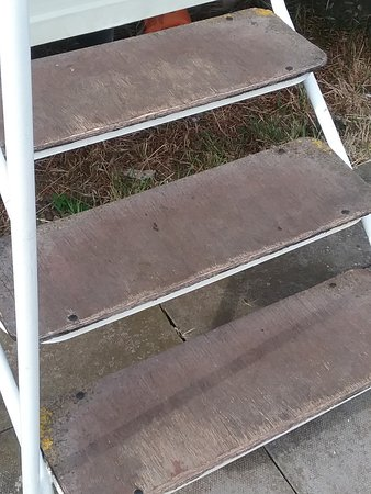 Manor Park Holiday Park: DOG FRIENDLY STEPS     DONT THINK SO