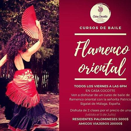 Cursos de Flamenco el Viernes a la 6PM