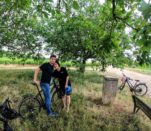La Vélo Vie: apreo break under the walnut tree in the middle of wineyards...