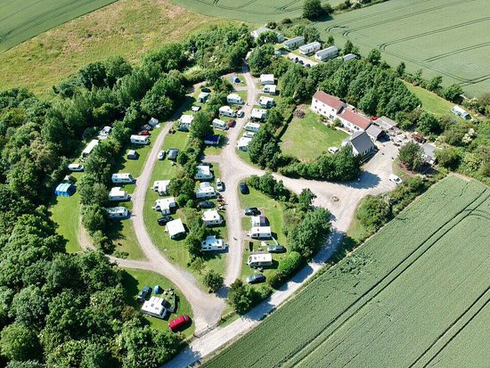 Summertime  - Picture of Strawberry Hill Farm Camping & Caravan Park and Tea Room, Durham - Tripadvisor