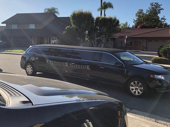 Classique Limousines