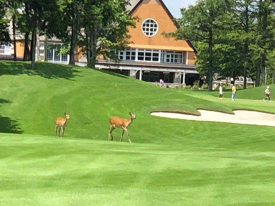 Hokkaido Brooks Country Club