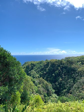 Garden Of Eden Arboretum Botanical Garden Hana 2019 All You