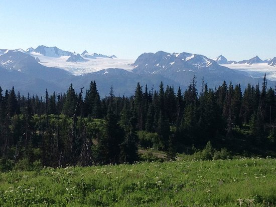 Fritz Creek, อลาสกา: From the head of Kachemak Bay, looking at Portlock and Dixon glaciers.