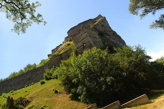 قلعة ديفن: green parts of the Devin Castle