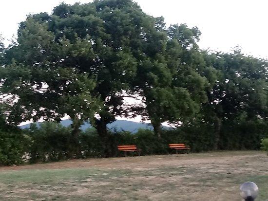 Montecastelli Pisano, Italia: Agriturismo San Nicoló
