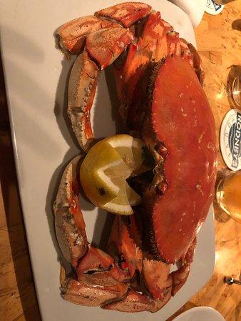 Molluschi e crostacei fantastici