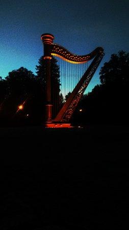 Ogrod Muzyczny: Night view