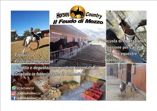 """Azienda Agricola Bio Horses Country """"Il Feudo Di Mezzo"""""""