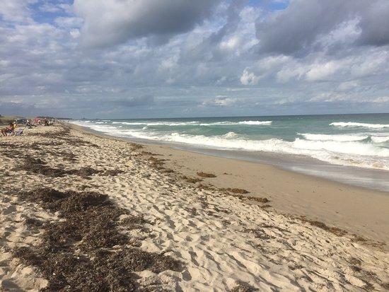 Blind Creek Beach: Pristine and Perfect | VISIT FLORIDA