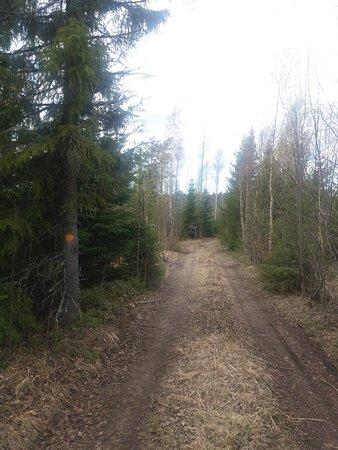 Rajavuoren luontopolku