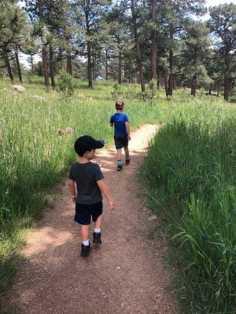 Trail options were 0.4 mi or 0.8 mi - perfect for young kids!