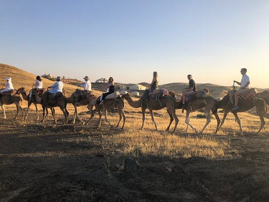 Morocco Discovery Holidays: Our wedding party rode the camels