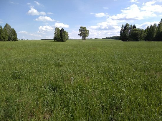 Mozhga, Rosja: Можга