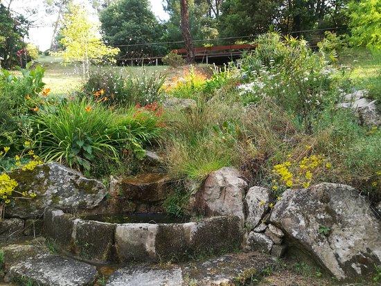Botanico de Montealegre