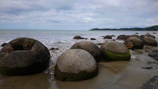 Moeraki, Nueva Zelanda: 天氣差少少