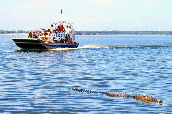 Hidrodeslizador en los Everglades y...