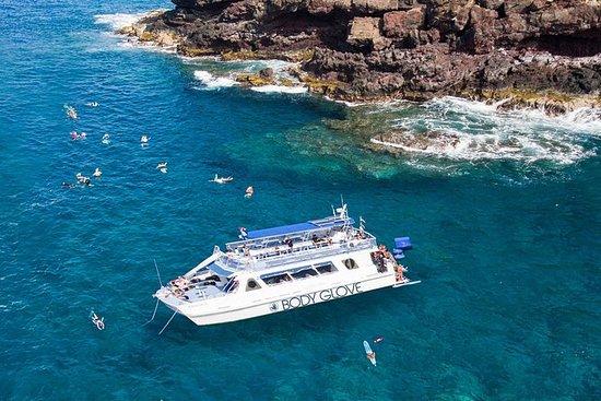 Snorkel & Dolphin Watch Adventure à...
