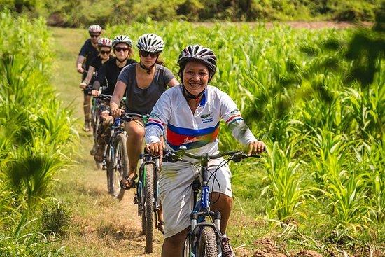 Tour guidato in bici delle Isole del