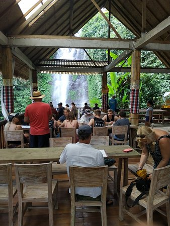 They search for the real ECO cafe ...it is waterfall-breeze ECO CAFe 1 a farmers' cooperative