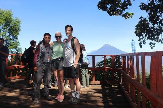 私人旅游一日徒步旅行 - 来自Puerto Quetzal的帕卡亚火山