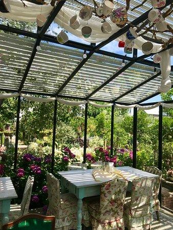 Gardenia Shevardnadze Little Cafe, Tbilisi - Restaurant
