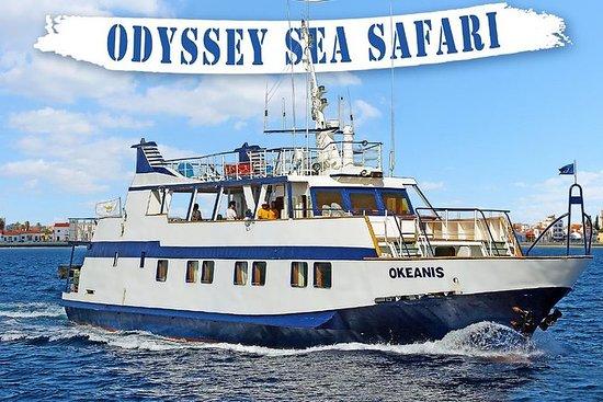 Odyssey Boat Safari - da Larnaca