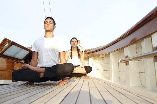 瑜伽与品酒在莱夫卡达周围量身定制的晚间游轮