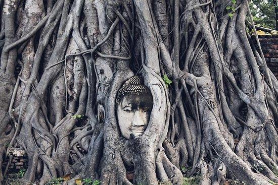 Explora Ayutthaya con almuerzo crucero