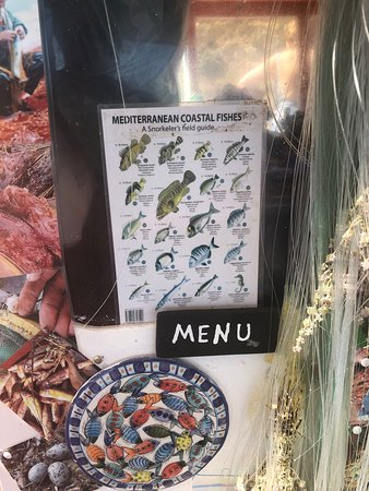 Nikolaki's Swimming Trips: The menu is fantastic but depends on the cooperation of the fish!!!