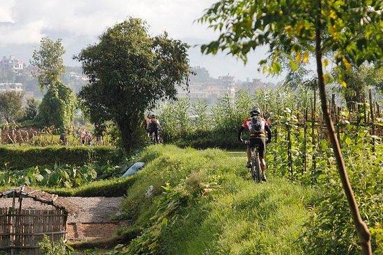 11 dager Nepal Mountain Biking...