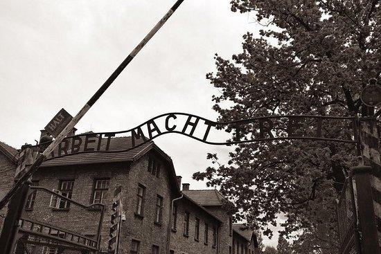 從克拉科夫出發:Aushwitz  - 比克瑙博物館私人交通工具