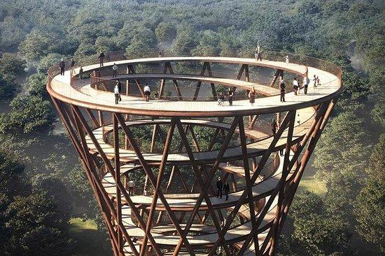 木造高層ビルへの日帰りツアー