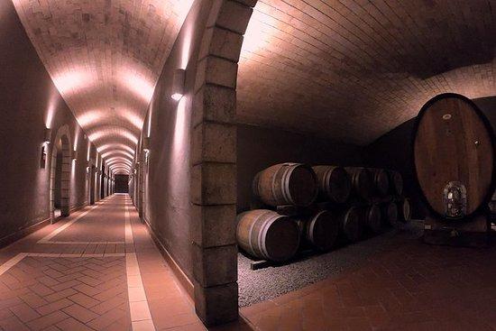 Degustazione di vini e olio