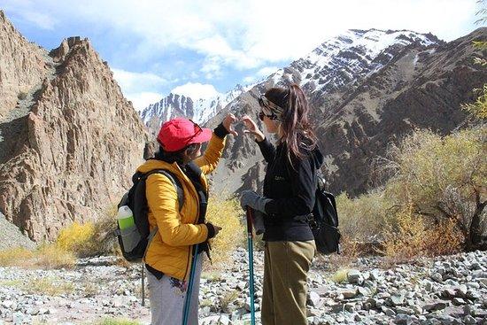 Ladakh One Day Trek