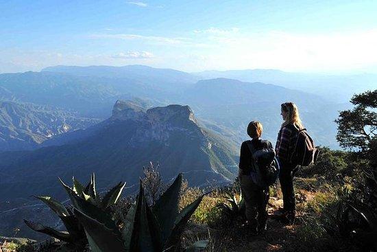 Tour alla Sierra Gorda in un giorno