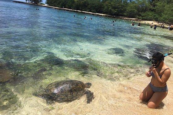 Grand Circle Island-tour plus snorkelen ...