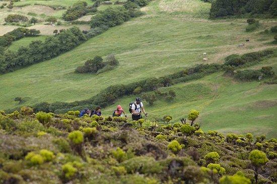 Wandelen op de 10 Volcanos Trail in ...
